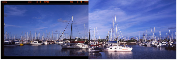 Manley Marina - Before & After