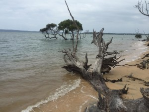 Moreton Bay - South